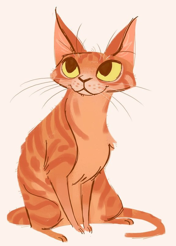 Кот рисунок картинка