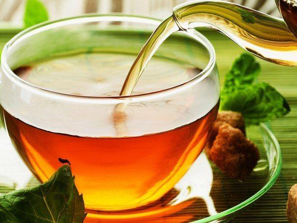 Монастырский чай, отзывы, правда или развод, где купить ?