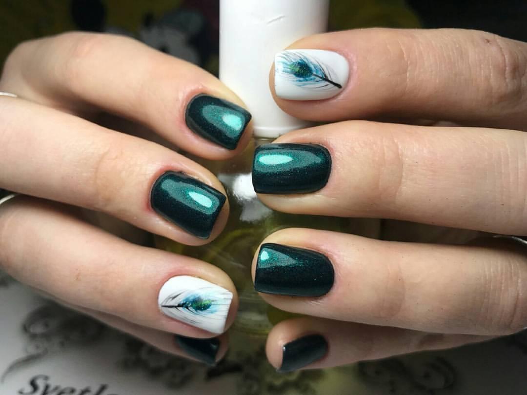 Как создать эскиз и рисунок пера павлина на ногтях