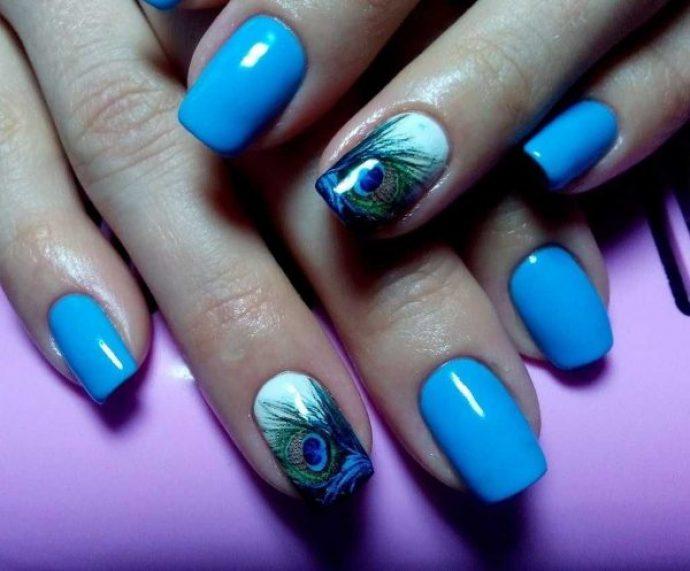 Маникюр голубого цвета с пером