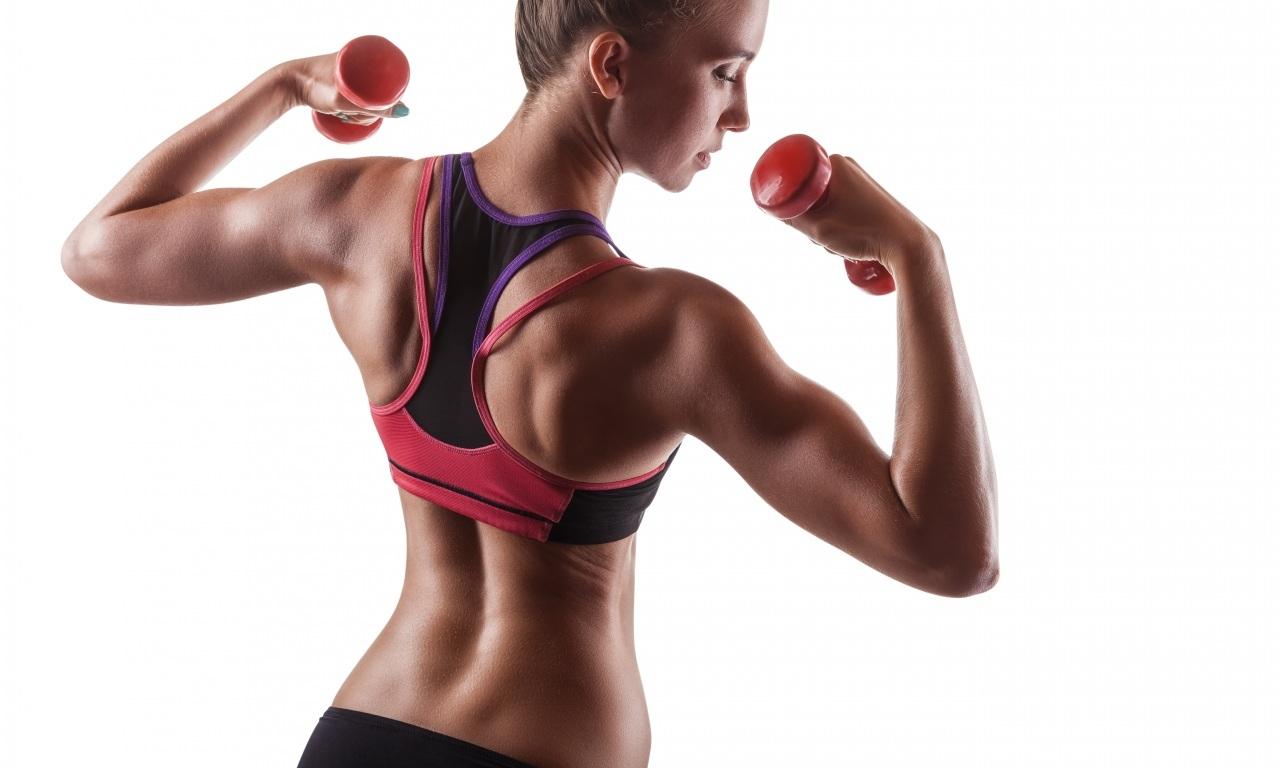 Упражнения в картинках с мышцами для женщин