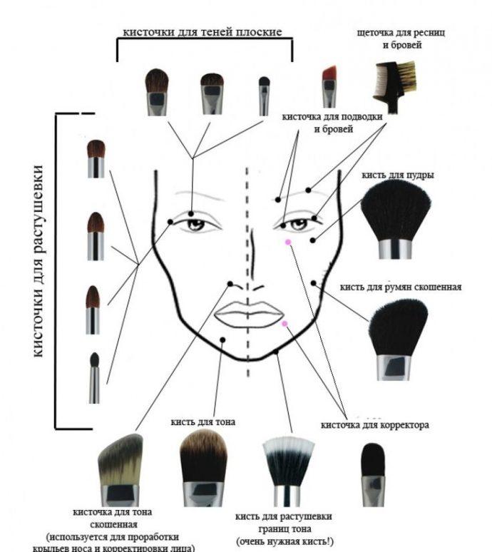 Области нанесения макияжа кистью
