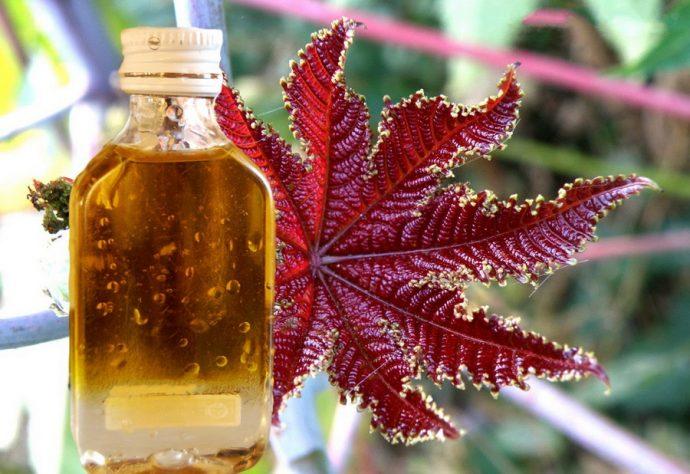 Касторовое масло в прозрачной бутылочке
