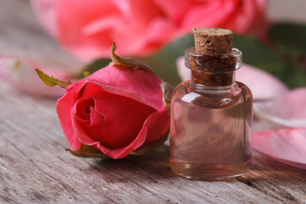 Аромат розы картинки