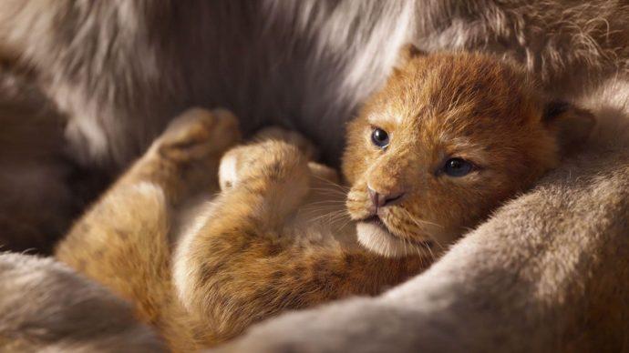 Кадр из кинофильма «Король лев»
