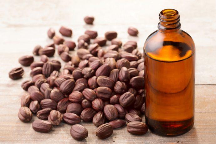 Семена и масло жожоба